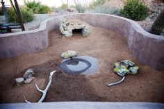 Desert Tortoise Habitat! My kids need a place like this, and by kids I mean my Desert Tortoise Kids!