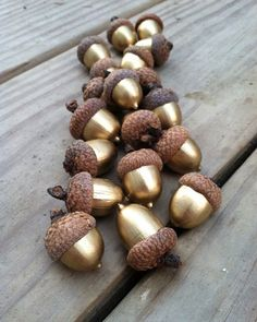 weihnachtsbasteleien eicheln glänzend weihnachtsdeko The Effective Pictures We Offer You About do it yourself knutselen A quality picture can tell you many things. Fall Room Decor, Dyi Fall Decor, Natural Fall Decor, Acorn Crafts, Crafts With Acorns, Pine Cone Crafts, Pumpkin Crafts, Christmas Time, Christmas Ornaments