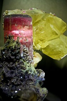 'Tourmaline Majesty' Elbait and Quartz masterpiece on display at the Smithsonian / Mineral Friends <3