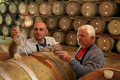 Our Winery - Torciano - italian winery in tuscany