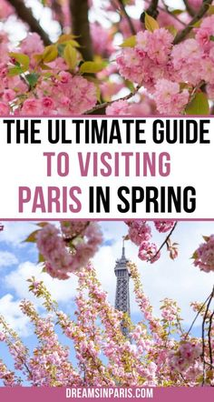 Paris In Spring, Springtime In Paris, Paris Things To Do, Romantic Things To Do, Spring Pictures, Paris Pictures, Day Trip From Paris, Paris Travel Tips, Luxembourg Gardens