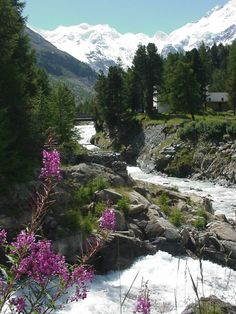 Morteratsch, Graubünden http://www.pinterest.com/pin/463870830341577377/ ความสวยของธรรมชาติ