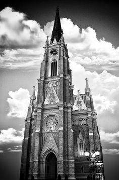 Novi Sad Cathedrale by Dusan Milak