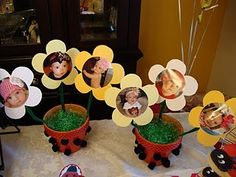 ladybug party flower pots- The center of the flower are baby pictures from her first 11 months