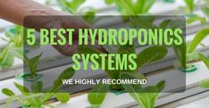 Top 5 Best Hydroponic Systems 2018 We Highly Recommend. The Wonders of a Good Hydroponics System 5 B Hydroponic Farming, Hydroponic Growing, Hydroponics System, Diy Hydroponics, Backyard Aquaponics, Aquaponics Plants, Apps, Green Technology, Plant Growth