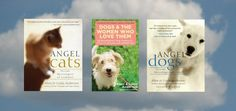 ANGEL CATS, ANGEL DOGS, and DOGS AND THE WOMEN WHO LOVE THEM Book Signings
