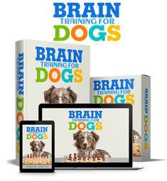 Brain Training For Dogs - Adrienne Farricelli's Online Dog Trainer Dog Training Courses, Best Dog Training, Brain Training, Dressage, Chesire Cat, Dogs Online, Dog Books, Cat Dog, Dog Barking