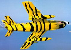 Fiat G 91 Portuguese Air Force - tiger meet Air Force Aircraft, Fighter Aircraft, Fighter Jets, F 16 Falcon, Aircraft Painting, Airplane Art, Thunder And Lightning, Jet Plane, Nose Art