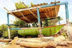 Boat & cats on Margarita Island