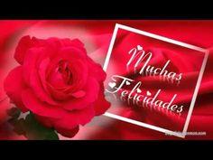 Feliz Dia de tu Santo - Pilar - YouTube