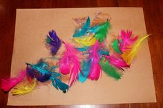 Feather collage:  Giving the children the open-ended activity to make a feather collage would be very DAP.  It would allow the children to experiment with the feathers as an art medium.  The colors are so cheerful and fun.