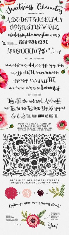 Sweetgrass Typeface & Floral Vectors by MakeMediaCo. on Creative Market