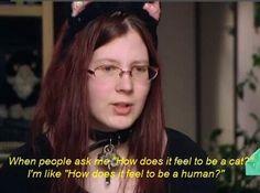intense cat lady