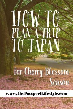 How to plan a trip to see the Cherry Blossoms in Japan! Everything you need to know about Sakura season in Japan, when to travel to Japan, to Kyoto, Tokyo and other bucket list places in the Spring. Read | thepassportlifestyle.com