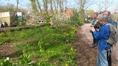 Tuinwijck - Amsterdam Een overhoek leent zich uitstekend voor experimenten met natuurvriendelijke beplanting.