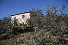 Trevi, Umbria - Casa Margherita www.casa-margherita.com