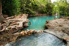 Cardwell Spa Pool - How to get there & recent photos Places Around The World, Around The Worlds, Spring Nature, Swimming Holes, Travel Aesthetic, Future Travel, Australia Travel, Holiday Travel, Adventure Travel