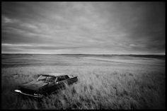 Leven in zwart-wit: Stephan Vanfleteren - Humo: The Wild Site