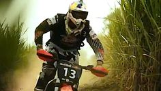 Motocross Race through a Sugarcane Field - Red Bull Cross Choice 2012 (VIDEO)