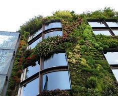"This ""living wall"" is a part of the outer facade of the Musée du Quai Branly, in Paris. Building Green Homes, Green House Design, Vertical Gardens, Design Strategy, Vintage Diy, Go Green, Home Design, Design Ideas, Design Art"