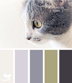kittenish hues via design seeds Scheme Color, Colour Pallette, Color Palate, Colour Schemes, Color Combos, Design Seeds, Room Colors, Paint Colors, House Colors