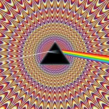 Image result for picture illusions