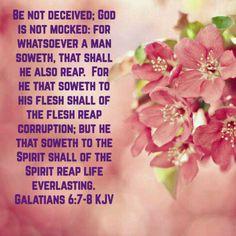 Galatians 6:7-8 (KJV)