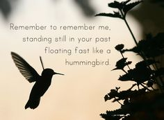 Some kind of hummingbird tattoo with this quote? Great Quotes, Quotes To Live By, Me Quotes, Motivational Quotes, Inspirational Quotes, Hummingbird Quotes, Hummingbird Symbolism, Hummingbird Meaning, Hummingbird Tattoo