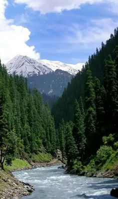 Nikron Valley, Azad Kashmir, Pakistan. It is deep into the upper Neelum valley. Fabulous place!!!!it appears that, especially on the other side of the river that no human ever walked there. The only transport that gets there are the local jeeps.