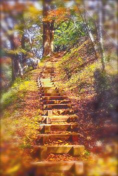 Stairway to heaven by Tim Ernst on 500px