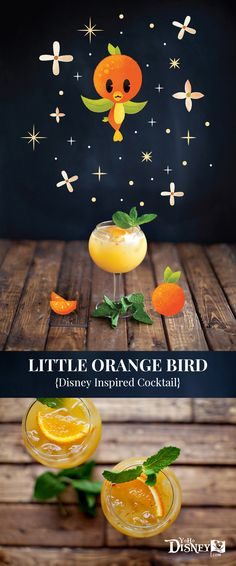 Have you ever heard of the Little Orange Bird?  Well, there's a small cult following of this tiny little vintage Disney bird, so we are joining with Adam Grason, friend and talented Disney illustrator, to create this week's Disney inspired cocktail. << Recipe in link >>