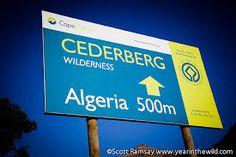 Image result for algeria campsite