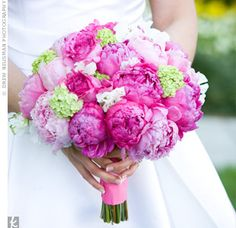 Are you looking for pink wedding flowers? Find photos or pink wedding bouquets and other flowers along with names of these flowers and ideas on how to choose which ones to use. Peonies And Hydrangeas, Hydrangea Bouquet, Purple Peonies, Peonies Bouquet, Green Hydrangea, White Peonies, Bridesmaid Bouquet, Wedding Bouquets, Wedding Flowers