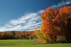 It's no surprise that fall foliage is a favorite time to capture this quintessential setting.