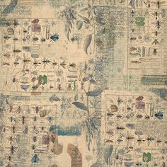 Tim Holtz - Wallflower- Entomology Bugs Bee Fly Writing Fabric PWTH027 BTY by…