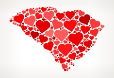 South Carolina Icon with Red Hearts Love Pattern vector art illustration