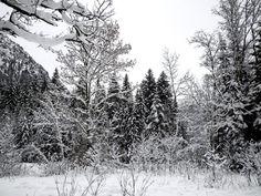 Das neue Jahr hat begonnen – Zeit zum Entspannen - http://selbstbewusstgesund.de/gesundheit/entspannung/das-neue-jahr-hat-begonnen-zeit-zum-entspannen/ - DSCN4514