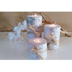 Invite the spirit of the north to your home. This handsome threesome of birch tree candles makes a lovely addition to cottage country or rustic décor. Top off a console table or create a unique centerpiece for a Holiday table ?C adding a touch of nature to your home is always rewarding. <br>  <ul>  <li>Handcrafted from New Hampshire birch trees and cut into varied heights</li>  <li>Each candle holder comes with a standard unscented white tea light</...