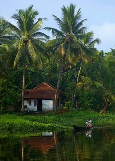 Pictures like this testify that Kerala is one of the most beautiful places in India. Goa India, South India, Landscape Photography, Nature Photography, Travel Photography, Village Photography, Lonely Planet, Kerala Backwaters, Village Photos
