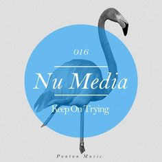 Keep On Trying from Ponton Music on Beatport Keep Trying, Cover Art, Vinyl Records, Music, Miami, Life, Design, Musica, Musik