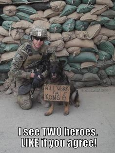 German Shepherd Military War & Handler - May God Bless & Protect Both of You! Military Working Dogs, Military Dogs, Police Dogs, Military Girl, Animals And Pets, Cute Animals, Game Mode, War Dogs, German Shepherd Dogs