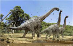"Brachiosaurus altithorax (""arm lizard"") Chordata/Reptilia/Sauropodomorpha/Titanosauriformes/Brachiosauridae Late Jurassic - 153 Ma) 65 ft in length and 45 tons Giant Dinosaur, Dinosaur Fossils, Dinosaur Art, Jurassic World, Reptiles, Mammals, Jurrassic Park, Dragons, Prehistoric Creatures"