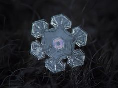 Macro photo of a snowflake