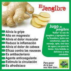 Beneficios del Jengibre #alimentos #salud #comerbien #vidasana