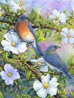 "Gallery.ru / marilyn2 - Альбом ""PAJAROS 11"" Cross Stitch Bird, Cross Stitching, Background Vintage, Bird Art, Blue Bird, Quilt Blocks, New Art, Painting & Drawing, Decoupage"