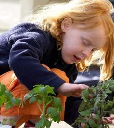 5 eco-friendly activities with kids