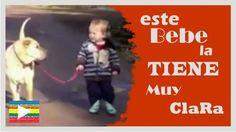 VideoViral:Este bebé la tiene muy clara--http://bit.ly/1TDkpVP