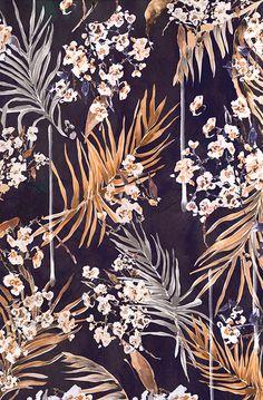 Nikki Strange Golden oriental palms