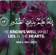 Couple Questions To Answer Together Info: 7844598768 Beautiful Quran Quotes, Deep Thought Quotes, Noble Quran, Learn Islam, Positive Images, Me Quotes, Hindi Quotes, Qoutes, True Feelings