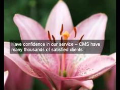 Solicitors Online offering the most competitive quotes on the internet from CMS Competitive Quotes, Internet, Videos